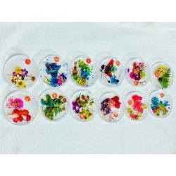 набор сухоцветов в баночке